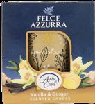 felce aria candela vaniglia gr.120
