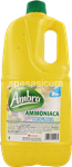 ambra ammoniaca profumata ml.2000