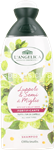 l'angelica shampoo uso frequente ml.250