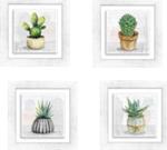 collezione ceramic white botany shabby