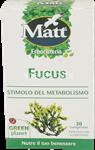 matt fucus