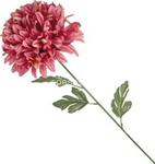 stelo   p. fiore nemo 81cm 38480